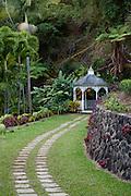 Tropical Gardens of Maui, Iao Valley, Maui, Hawaii