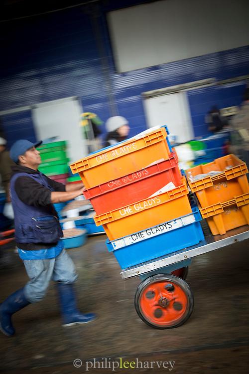 Porter at the Fish Market in Villa Mar?a del Triunfo district of Lima, Peru, South America