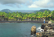 Punalu'u Black Sand Beach, Island of Hawaii<br />