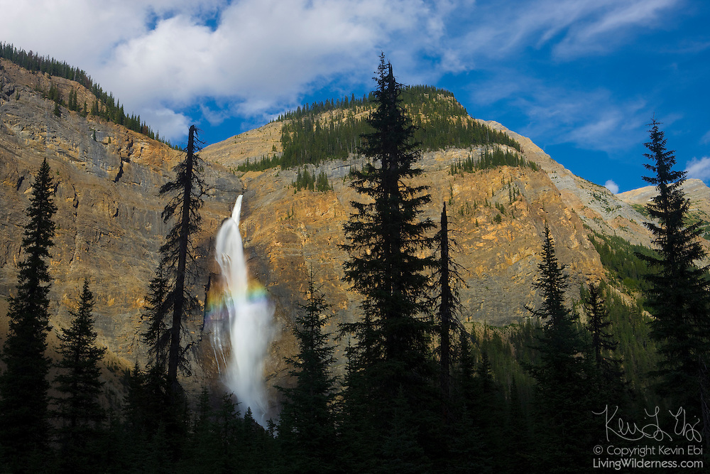 "A rainbow forms in the middle of Takakkaw Falls, located in Yoho National Park, British Columbia, Canada. The falls are 384 meters (1260 feet) tall, ranking as the second-tallest in western Canada. ""Takakkaw"" is derived from the Cree word for ""it is wonderful."""