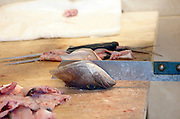 cutting up a fresh fish head at a fish vendor, Jaffa Israel February 2007