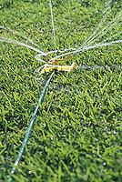 Rociador de agua en la grama.