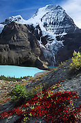 Mount Robson (3954 meters or 12,972 feet elevation), highest peak in the Canadian Rocky Mountains, rises above Berg Lake, in Mount Robson Provincial Park, British Columbia, CANADA. Ground foliage turns red in mid September. Berg Lake (1641 meters or 5385 feet elevation) has a beautiful turquoise color created by glacial sediments suspended in the water. Leaves of low-growing bushes have changed from summer green to a blazing red color in late September. Mount Robson is part of the Canadian Rocky Mountain Parks World Heritage Site honored by UNESCO in 1984. Published in Sierra Magazine, Sierra Club Outings January/February 2004.
