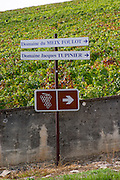 walking path sign vineyard mercurey burgundy france