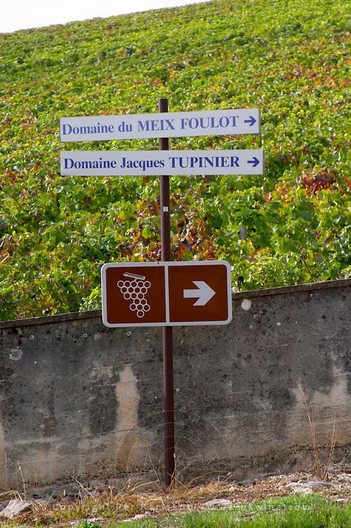 walking path sign vineyard mercurey burgundy france