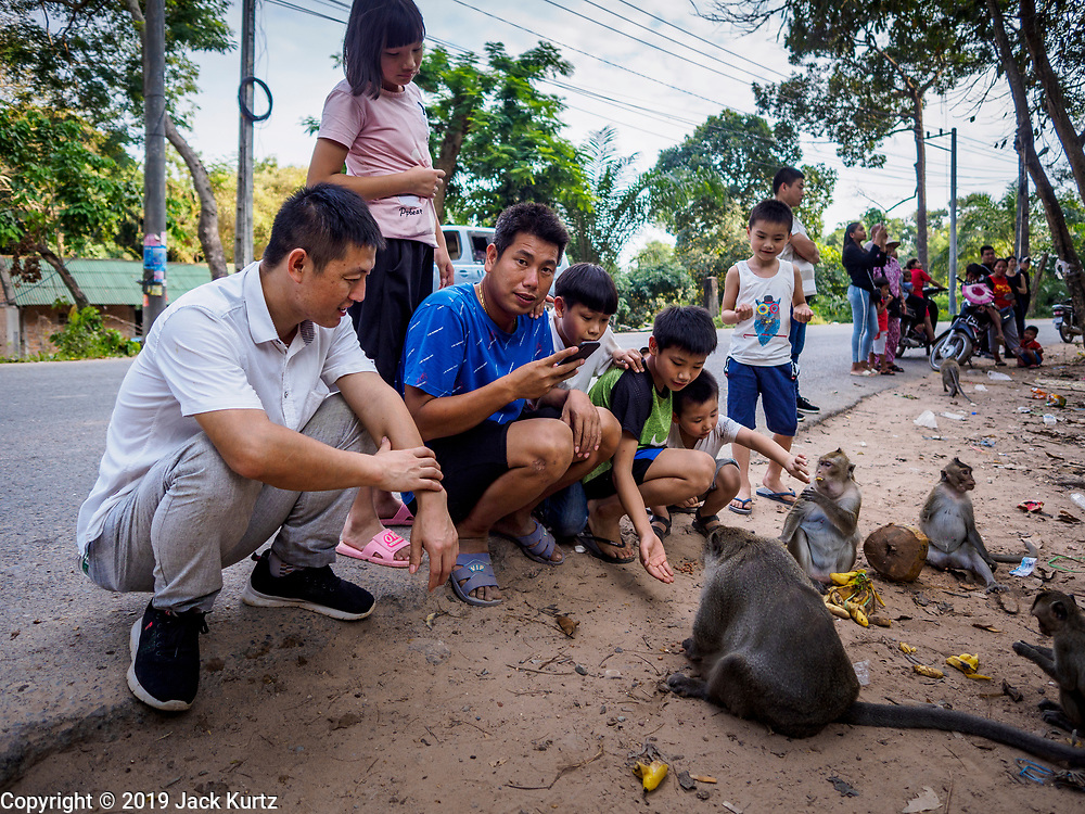 "12 FEBRUARY 2019 - SIHANOUKVILLE, CAMBODIA:  Chinese tourists feed macaque monkeys near Independence Beach in Sihanoukville. There are about 50 Chinese casinos and resort hotels either open or under construction in Sihanoukville. The casinos are changing the city, once a sleepy port on Southeast Asia's ""backpacker trail"" into a booming city. The change is coming with a cost though. Many Cambodian residents of Sihanoukville  have lost their homes to make way for the casinos and the jobs are going to Chinese workers, brought in to build casinos and work in the casinos.       PHOTO BY JACK KURTZ"