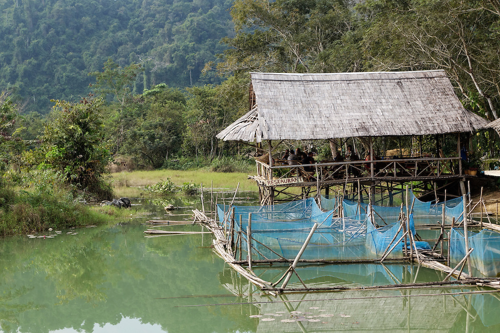 Fish ponds at the Saelao Project, a sustainable development and education program near Vang Vieng, Laos.
