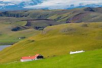 Islande. Region de Eldhraun. // Iceland. Eldhraun region.