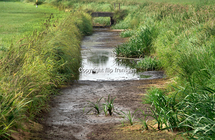 Nederland, Noord Brabant, 19-8-2020 Door de aanhoudende droogte, zijn op de hogere zandgronden zoals de achterhoek, veluwe en brabant veel waterlopen zoals beken en afwateringskanalen droogevallen of bijn droog . Hier in de buurt van Stevensbeek waar de oefeltse raam en de sambeekse uitwatering lopen . Het is het derde jaar op rij dat het droge weer en neersalgtekort de watervoorziening in deze gebieden ernstig verstoort . Veel boeren, landbouwers komen met de beregening van hun akkers en weilanden in de problemen . Foto: ANP/ Hollandse Hoogte/ Flip Franssen