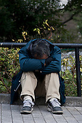 A homeless man in a Park in Shinjuku, Tokyo, Japan Wednesday, January 7th 2009
