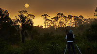 Photographer and tripod viewing the sun rising over the trees in the early morning fog. Merritt Island National Wildlife Refuge. Image taken with a Fuji X-T2 camera and 100-400 OIS lens (ISO 200, 100 mm, f/7, 1/680 sec).