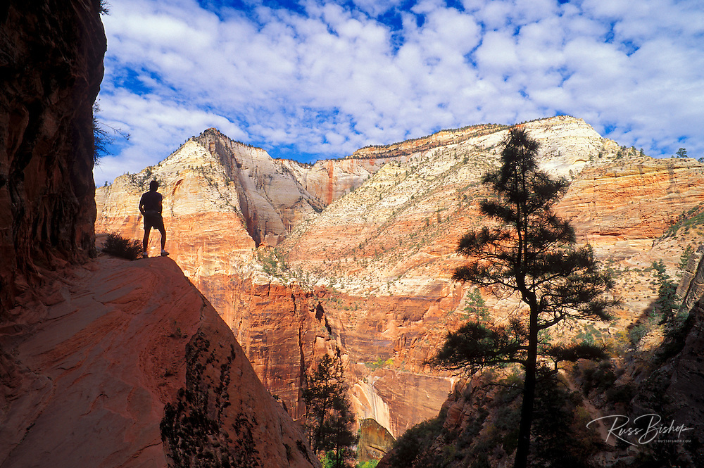 Hiker silhouetted on the Hidden Canyon Trail above Zion Canyon, Zion National Park, Utah USA