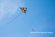 63495-02702 Kites flying at Flagler Beach Flagler Beach, FL