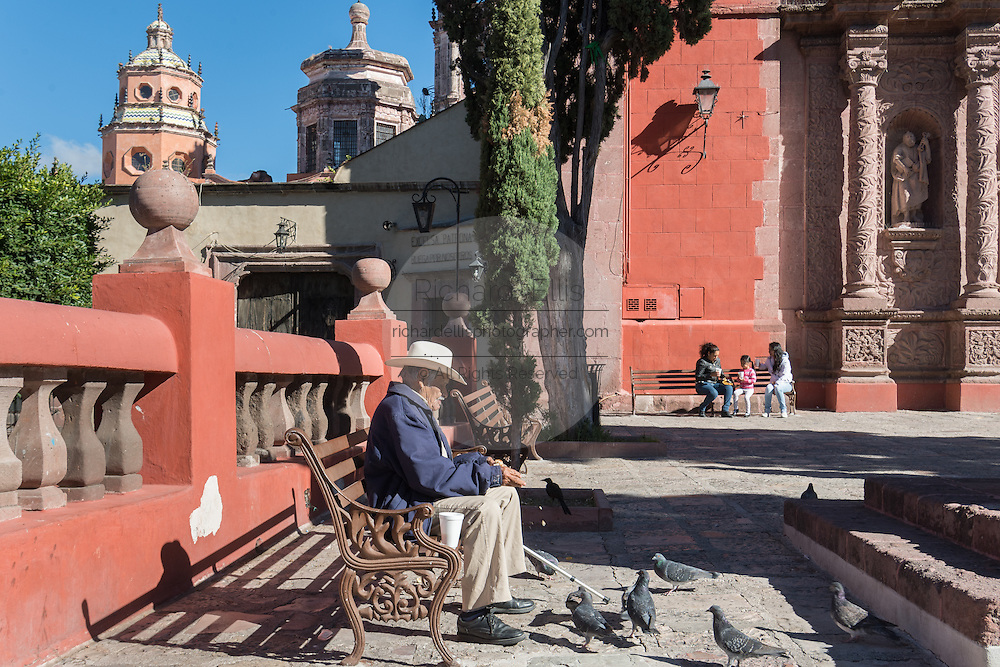An elderly Mexican man feeds pigeons in front of the Oratorio of San Felipe Neri church in the colonial UNESCO heritage city of San Miguel de Allende, Mexico.