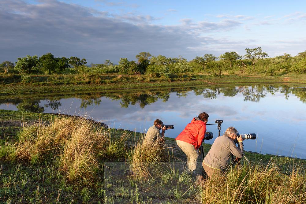 Safari-Touristen mit Flusspferden (Hippopotamus amphibius) im Inyati Private Game Reserve im Westen des Krueger Nationalparks zu Beginn der Regenzeit im November