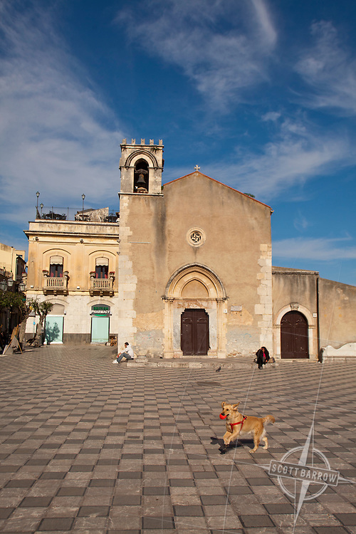 Dog playing in front of the 15th-century church of Sant'Agostino, now the town library. It sits on the Piazza Novo Aprile,