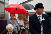 Guy Cowling, judging  a bull class along with spectators. The hairdryers are out and the shampoo is flowing at the Great Yorkshire Show, one of Britain's biggest agricultural shows. Its famous for its competitive displays of livestock. The event, established in 1837, attracts over 125 000 visitors a year and has over 10 000 entries to its pedigree competitions ranging from pigeons and rabbits to bulls and shire horses. At the heart of the show is the passion of the exhibitors who spend hundreds of hours ( and pounds)  training, preparing and grooming their animals.