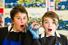 Seafood in Schools project | Edinburgh | 7 June 2016