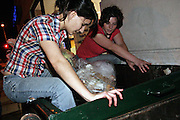 Stephanie, 21, (left) and Rachel, 22, members of the Freegan community in New York, dumpster diving on 3rd Avenue in Manhattan to recover edible food, in New York, NY., on Wednesday, June 21, 2006. Freegans are a community of people who aims at recovering wasted food, books, clothing, office supplies and other items from the refuse of retail stores, frequently discarded in brand new condition. They recover goods not for profit, but to serve their own immediate needs and to share freely with others. According to a study by a USDA-commissioned study by Dr. Timothy Jones at the University of Arizona, half of all food in the United States is wasted at a cost of $100 billion dollars every year. Yet 4.4 million people in the United States alone are classified by the USDA as hungry. Global estimates place the annual rate of starvation deaths at well over 8 million. The massive waste generated in the process fills landfills and consumes land as new landfills are built. This waste stream also pollutes the environment, damages public health as landfills chemicals leak into the ground, and incinerators spew heavy metals back into the atmosphere. Freegans practice strategies for everyday living based on sharing resources, minimizing the detrimental impact of our consumption, and reducing and recovering waste and independence from the profit-driven economy. They are dismayed by the social and ecological costs of an economic model where only profit is valued, at the expense of the environment. In a society that worships competition and self-interest, Freegans advocate living ethical, free, and happy lives centred around community and the notion that a healthy society must function on interdependence. Freegans also believe that people have a right and responsibility to take back control of their time.