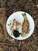 Cooking blue fish named Ogus. On Mantabuan island.