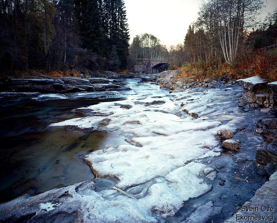 Early Frost.<br /> Foto: Svein Ove Ekornesvåg