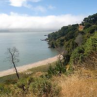 Angel Island by Anthony Estes