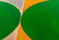 Aerial view of crop circles north of Goodland, Kansas USA.