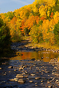 Bad River, Ashland County, Wisconsin, flowing-water natural nature peaceful river tranquil tranquility water autumn colour leaves trees yellow green orange