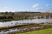 Flooded meadow in Windrush Valley,  Burford, The Cotswolds, United Kingdom