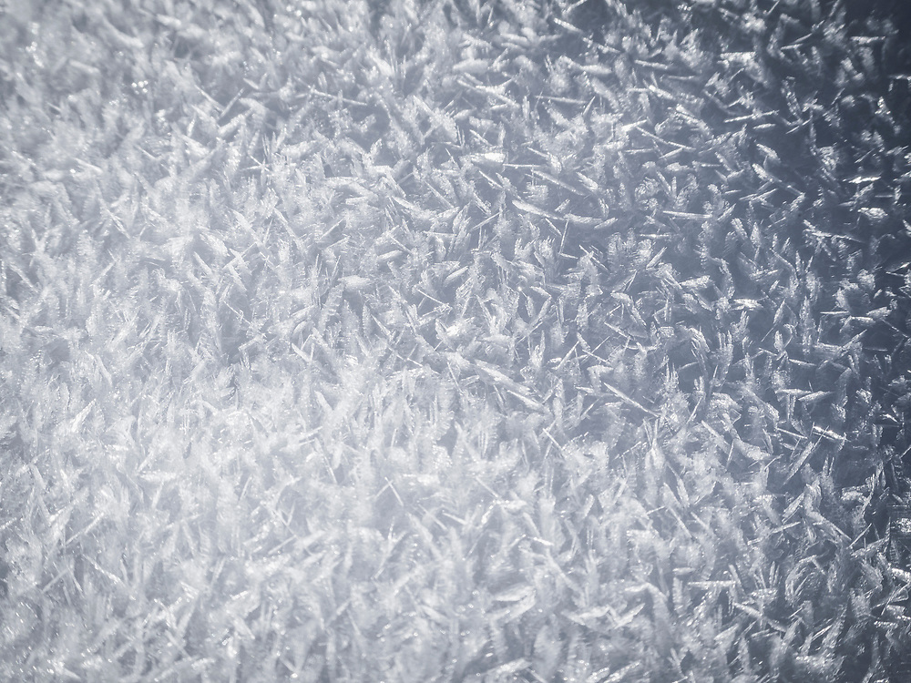 Close-up of snow crystals, Valley of Yach, Elzach, Black Forest, Baden-W¸rttemberg, Germany