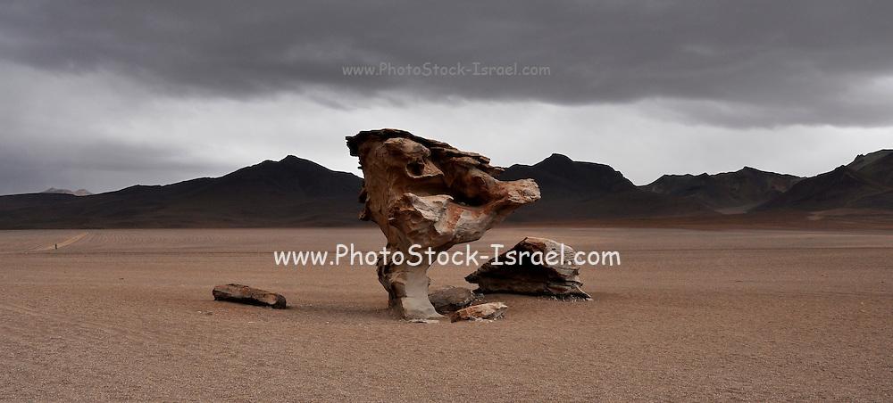 "Arbol de Piedra (""stone tree"") is an isolated rock formation in the Eduardo Avaroa Andean Fauna National Reserve of Sur Lipez Province, Bolivia."