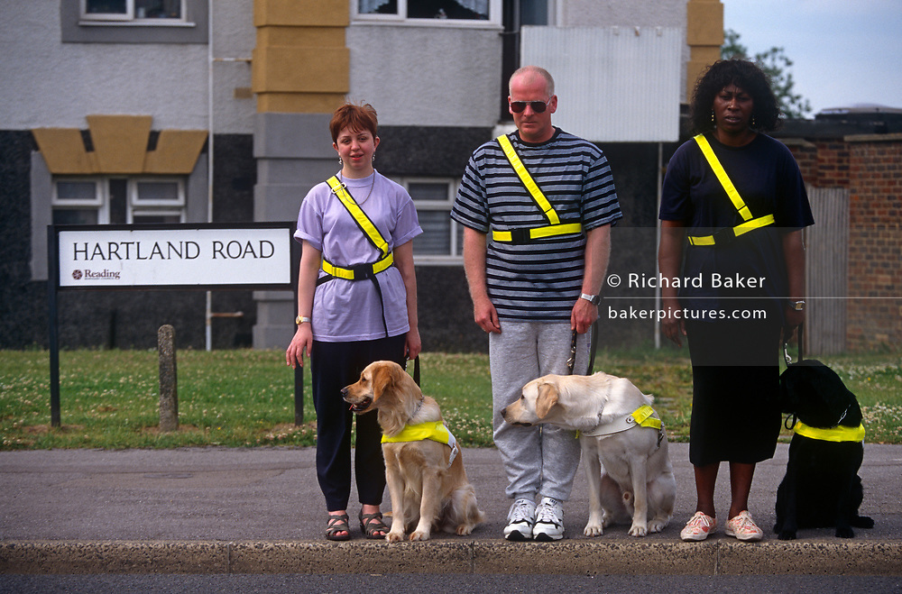 Three trainee guide dogs and their new blind owners practice crossing the road near the The Guide Dogs for the Blind Association, on 9th June 1997, in Reading, England.