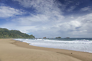 View of Sukamade beach, Forest in the background, Meru Betiri National Park, East Java, Indonesia, Southeast Asia