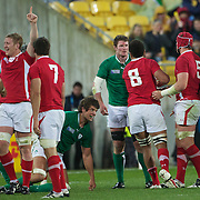 Wales celebrate victory after the Ireland V Wales Quarter Final match at the IRB Rugby World Cup tournament. Wellington Regional Stadium, Wellington, New Zealand, 8th October 2011. Photo Tim Clayton...