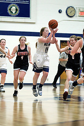 7 January 2019:  Heyworth Hornets v Ridgeview Mustangs in the gym at Ridgeview High School in Colfax IL