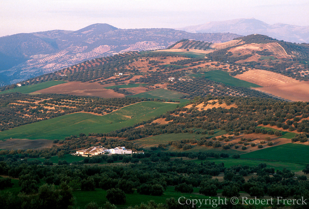 SPAIN, ANDALUSIA, AGRICULTURE fields, farms and olive trees near Loja, west of Granada, on the vega of Granada