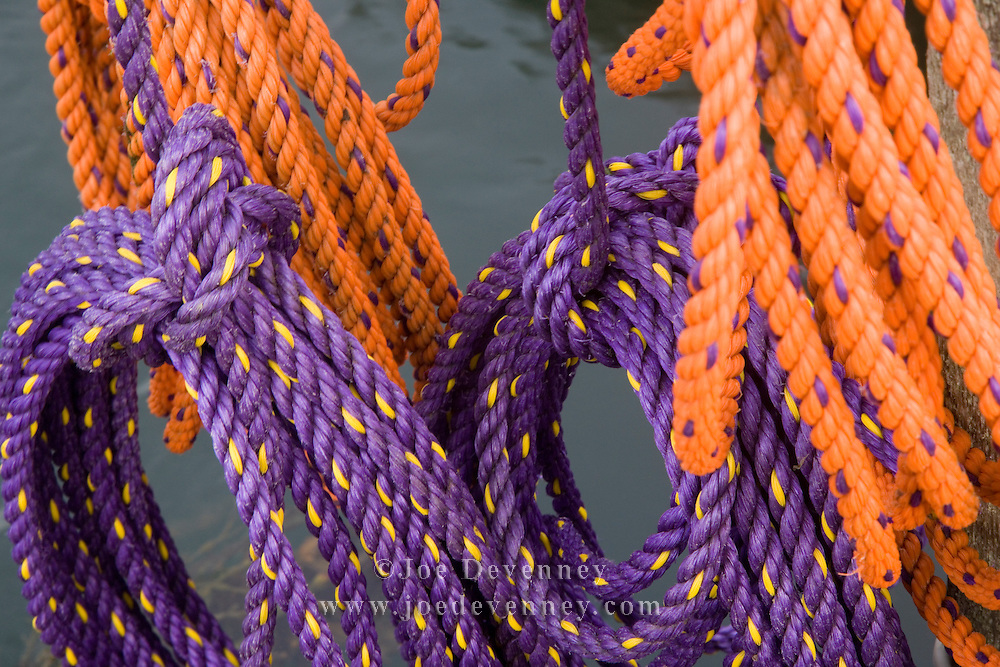 Orange and purple ropes in coils and ready to be used for lobster fishing