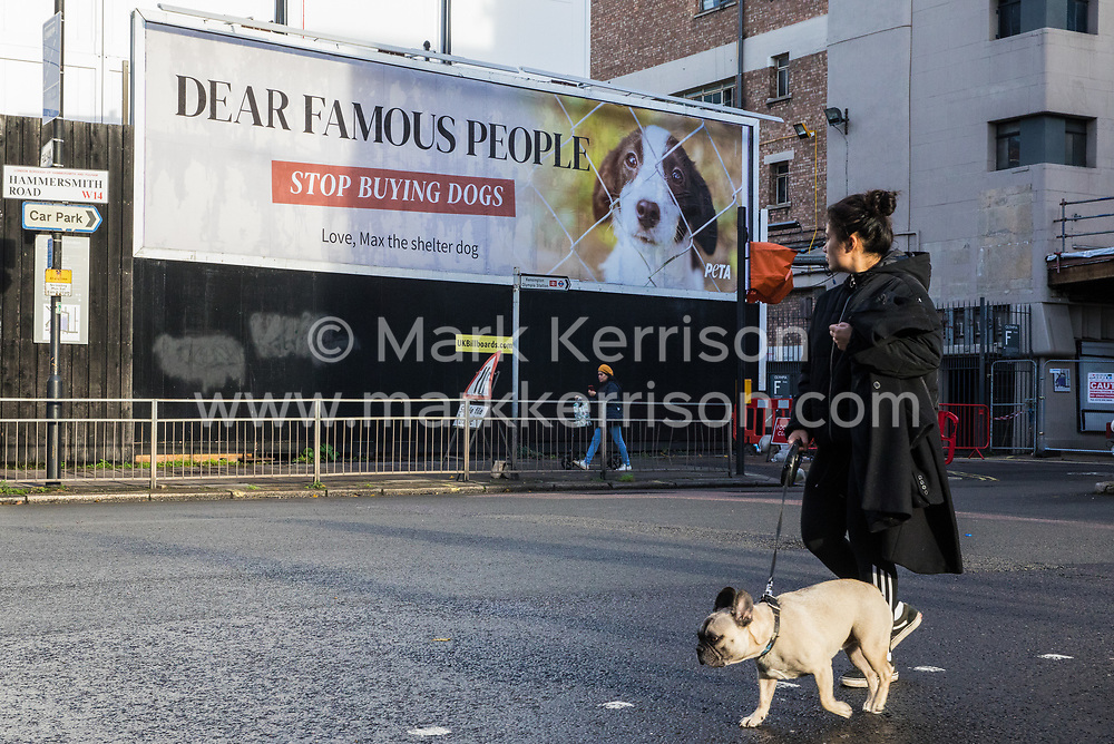 A new billboard advertisement produced by PETA UK, a UK-based charity dedicated to establishing and protecting the rights of all animals, is pictured on 17th November 2020 in London, United Kingdom. The advertisement, which features an image of Max the Shelter Dog, is intended to highlight the issue of celebrities and influencers purchasing 'pedigree' and 'designer' puppies from breeders at a time when thousands of dogs are waiting to be adopted at local shelters and rescue groups, including many acquired during the first coronavirus lockdown and then abandoned.