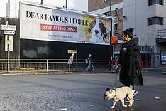 2020-11-17 PETA billboard targets celebs buying designer dogs
