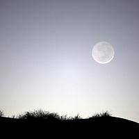 Africa, Namibia, Sossusvlei. Full Moon rises over dune.