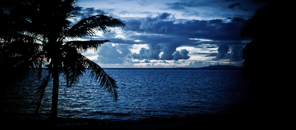 Beach Landscape with Lone Palm Tree, Just After Sunset, Fiji