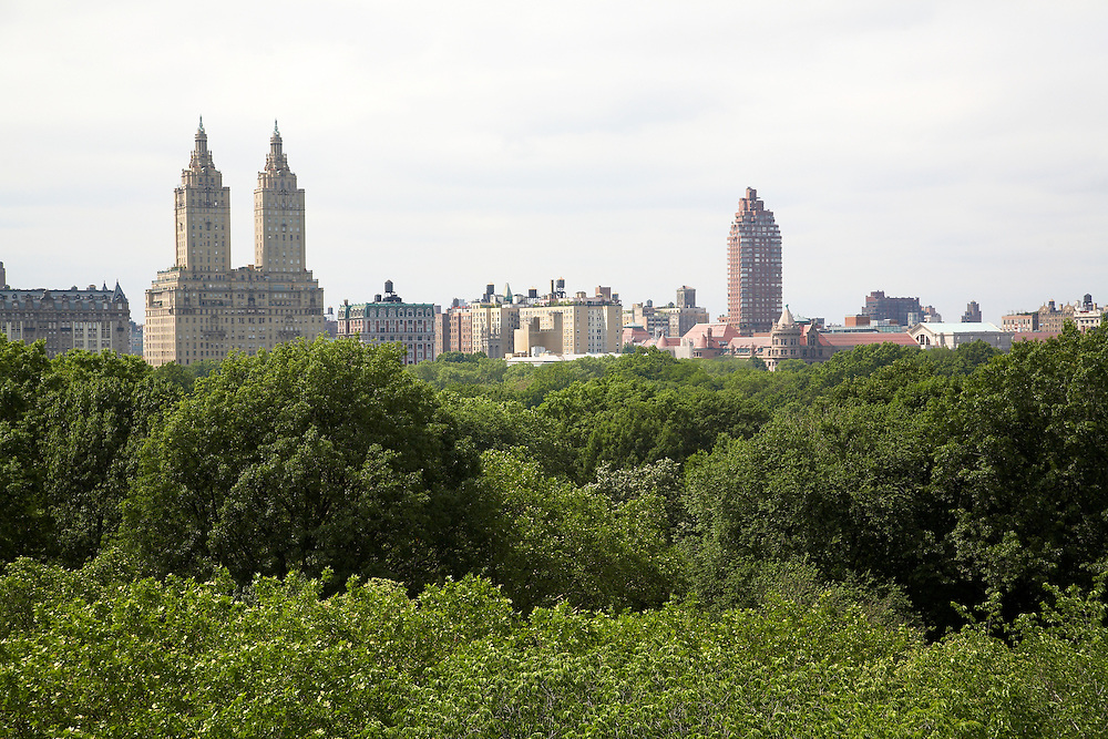 View of Central Park from 900 Fifth Avenue #10A