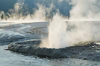 Cliff Geyser, Black Sand Basin, Yellowstone National Park