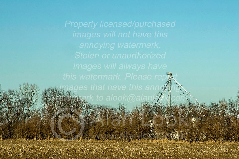 Grain storage area hidden behind rural tree line