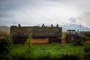 Men sit on the back of a tractor truck after picking sisal leaves from the plantation, on the 17th November 2019, Morogoro Region, Tanzania.  Tanzania is the largest exporter of Sisal and employs over 1 million workers in the country. The plants fibres are used to make rope, carpet and sacks. (photo by Andrew Aitchison / In pictures via Getty Images)