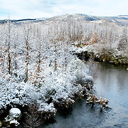 River at snow covered forest in the Sanabria region