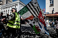 A man bringing the flag of the celtic nation.
