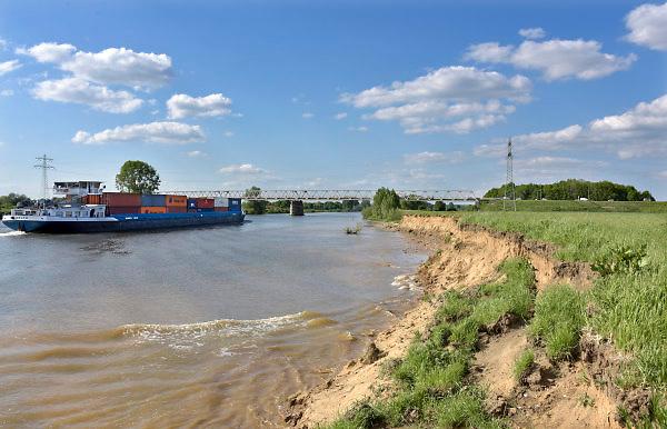Nederland, Gennep, 3-5-2018 Bij Gennep wordt het talud van de brug uitgegraven en vervangen door pijlers zodat het bij hoogwater beter doorstroomt. Dit talud vormt dan een flessenhals, obstakel voor het doorstromen . De Maasoevers moeten volgens RWS vrij zijn van obstakels en dus worden de bakenbomen niet meer vervangen . Deze bakenbomen op de oever zijn karakteristiek voor het landschap langs  de rivier de Maas . De Maas krijgt de ruimte. Door de aanleg van natuurvriendelijke oevers ontstaat er een geleidelijke overgang van water naar land. Op veel plaatsen langs de meanderende maas zijn nevengeulen aangelegd om het water meer ruimte tegeven .Foto: Flip Franssen