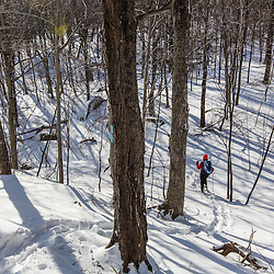 Hikers on the Hanson Trail in winter. Green Mountain. Effingham, New Hampshire.