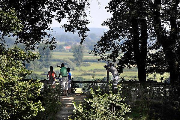 Nederland, Ubbergen, 19-6-2013Rondom en op de Duivelsberg. Uitzicht op en vanaf de kleine Motte richting de Duffelt.Foto: Flip Franssen